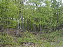 Lot for sale in Mille-Isles, Laurentides, Chemin du Lac-Fiddler, 23747629 - Centris.ca