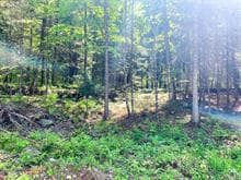 Terrain à vendre à Val-des-Monts, Outaouais, 79, Chemin  Katimavik, 22414806 - Centris.ca