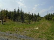 Land for sale in Lac-Drolet, Estrie, 670, 5e Rang, 10234672 - Centris.ca