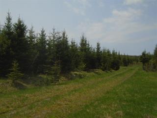 Land for sale in Lac-Drolet, Estrie, 670, 5e Rang, 10234672 - Centris.ca