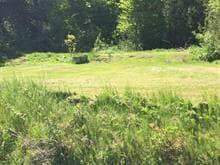 Lot for sale in Ripon, Outaouais, 39, Chemin du Lac-Grosleau, 18344756 - Centris.ca