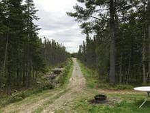 Terre à vendre à Saint-Pamphile, Chaudière-Appalaches, 218A, Rang  Saint-Camille, 28182695 - Centris.ca