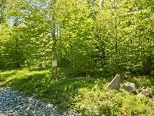 Terrain à vendre à Saint-Étienne-de-Bolton, Estrie, Rue de la Serpentine, 13202216 - Centris.ca