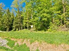 Terrain à vendre à Saint-Étienne-de-Bolton, Estrie, Rue de la Serpentine, 12998399 - Centris.ca