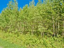 Terrain à vendre à Eastman, Estrie, Chemin  George-Bonnallie, 22958412 - Centris.ca