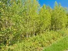Terrain à vendre à Eastman, Estrie, Chemin  George-Bonnallie, 25100252 - Centris.ca