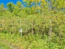 Terrain à vendre à Eastman, Estrie, Chemin  George-Bonnallie, 16007371 - Centris.ca