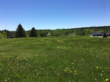 Lot for sale in Saint-Adelphe, Mauricie, Rue  Principale, 17202312 - Centris