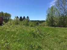 Lot for sale in Saint-Adelphe, Mauricie, Rue  Principale, 19035013 - Centris