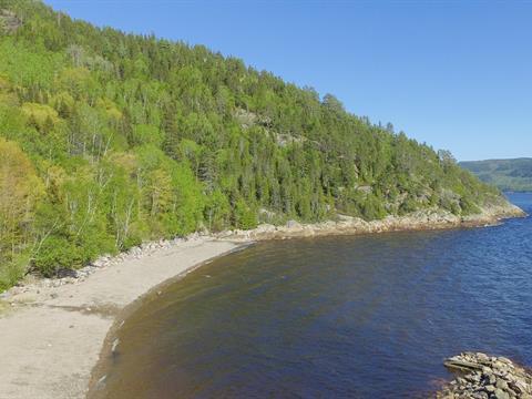 Terrain à vendre à Sainte-Rose-du-Nord, Saguenay/Lac-Saint-Jean, 1, Rue de la Montagne, 24095783 - Centris