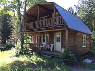 Cottage for sale in Rivière-à-Pierre, Capitale-Nationale, Rang 3 Bois, 11988986 - Centris.ca