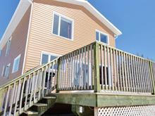 Maison à vendre à La Tuque, Mauricie, 24, Rang  Ouest, 13618510 - Centris.ca