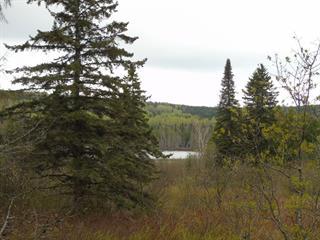 Land for sale in Saint-Magloire, Chaudière-Appalaches, Rang du Lac, 23728004 - Centris.ca