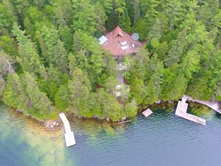 Chalet à vendre à Bouchette, Outaouais, 3, Île-à-la-Croix, 15049068 - Centris.ca