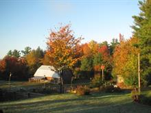 Hobby farm for sale in Papineauville, Outaouais, Rue  Papineau, 11041074 - Centris