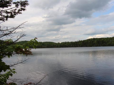 Lot for sale in Chertsey, Lanaudière, Chemin du Domaine-des-Sentiers, 23553105 - Centris.ca