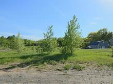 Terrain à vendre à Saint-Édouard-de-Maskinongé, Mauricie, 2891, Rang des Chutes, 21575641 - Centris.ca