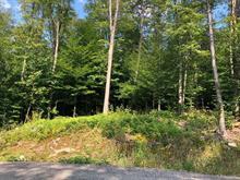Terrain à vendre à Mont-Tremblant, Laurentides, Allée du Mocock, 25393017 - Centris.ca