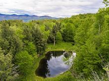 Terrain à vendre à Sutton, Montérégie, Chemin  Wilson, 20071611 - Centris.ca