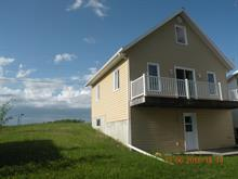 Maison à vendre à Clerval, Abitibi-Témiscamingue, 190, Plage  Delisle, 27637696 - Centris