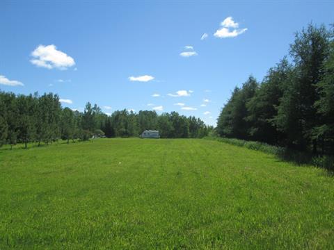 Terrain à vendre à Barraute, Abitibi-Témiscamingue, Chemin du Lac-Fiedmont, 18376704 - Centris