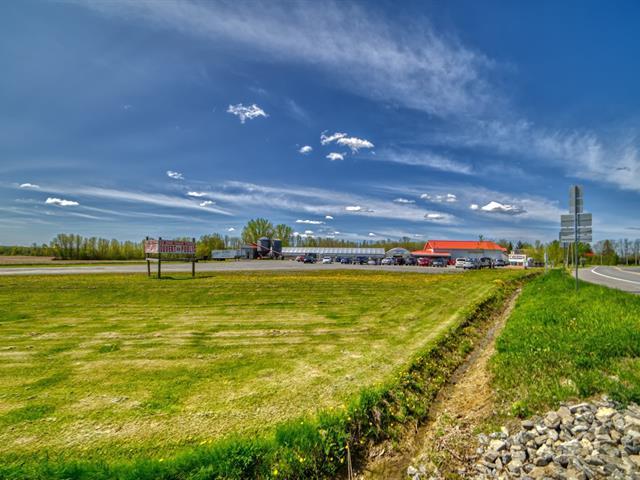 Ferme à vendre à Lacolle, Montérégie, 10 - 12, Route  223, 12885052 - Centris.ca