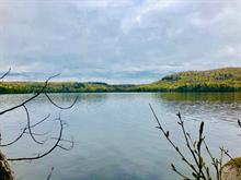 Lot for sale in Sainte-Christine-d'Auvergne, Capitale-Nationale, 253, Chemin du Lac-Clair, 27922819 - Centris.ca
