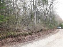 Terrain à vendre à Mont-Laurier, Laurentides, Chemin des Sarcelles, 27830725 - Centris.ca