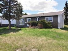 Maison à vendre à La Sarre, Abitibi-Témiscamingue, 38, Avenue  Demers Ouest, 16092686 - Centris.ca
