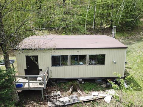 Chalet à vendre à Litchfield, Outaouais, 1, Chemin du Rang 11, 27986617 - Centris.ca