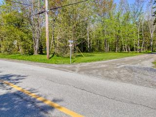 Lot for sale in Saint-Denis-de-Brompton, Estrie, 450, Chemin  Duclos, 15410422 - Centris.ca