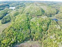 Terrain à vendre à Chénéville, Outaouais, Chemin  Bédard, 15467044 - Centris.ca