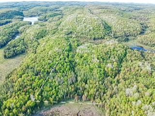 Lot for sale in Chénéville, Outaouais, Chemin  Bédard, 15467044 - Centris.ca