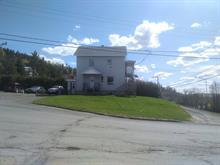 Quadruplex à vendre à Causapscal, Bas-Saint-Laurent, 333, Route  Guay, 10250764 - Centris.ca
