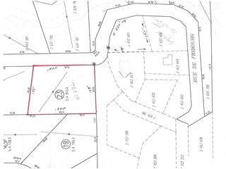 Lot for sale in Sainte-Adèle, Laurentides, Rue de Fribourg, 22178365 - Centris.ca