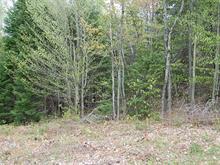 Terrain à vendre à Nominingue, Laurentides, Chemin des Faucons, 28408091 - Centris.ca
