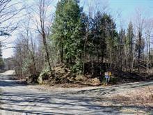 Terrain à vendre à Cleveland, Estrie, 200B, Chemin  Sterrett Mine, 14530280 - Centris.ca