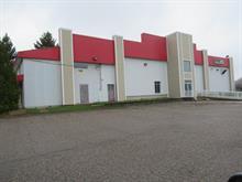 Commercial building for sale in Mont-Laurier, Laurentides, 1747, boulevard  Albiny-Paquette, 21267048 - Centris.ca