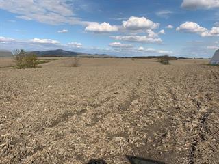 Terre à vendre à Marieville, Montérégie, Chemin du Ruisseau-Saint-Louis Est, 15387307 - Centris.ca