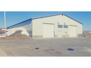 Farm for sale in Saint-Ambroise, Saguenay/Lac-Saint-Jean, 447 - 449, Rang  Double, 28114803 - Centris.ca