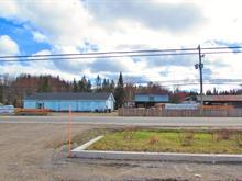 Bâtisse industrielle à vendre à Val-David, Laurentides, 1675A - 1675B, Route  117, 21045066 - Centris.ca