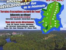 Terrain à vendre à Bégin, Saguenay/Lac-Saint-Jean, 10, Chemin  Truchon, 9248511 - Centris.ca