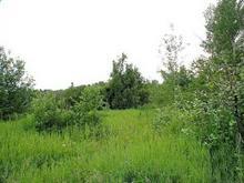 Terre à vendre à Saguenay (Chicoutimi), Saguenay/Lac-Saint-Jean, Rue  Delisle, 27816017 - Centris.ca