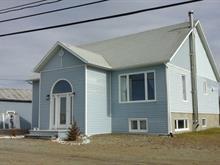 Maison à vendre à Cap-Chat, Gaspésie/Îles-de-la-Madeleine, 227, Rue  Notre-Dame Ouest, 10886190 - Centris.ca