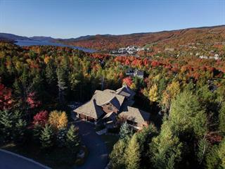 Maison à vendre à Mont-Tremblant, Laurentides, 185, Chemin de la Réserve, 21346946 - Centris.ca
