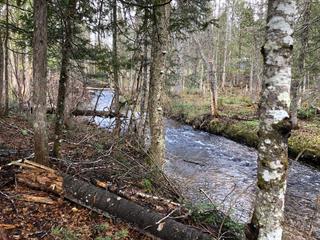 Terrain à vendre à Mont-Laurier, Laurentides, Chemin du 8e-Rang Nord, 9062636 - Centris.ca