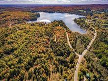 Terre à vendre à Sainte-Marcelline-de-Kildare, Lanaudière, 46e rue du Lac-des-Français, 10101553 - Centris