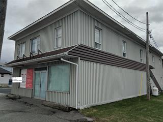 Duplex à vendre à Saint-Honoré-de-Shenley, Chaudière-Appalaches, 484 - 486, Rue  Principale, 25371775 - Centris.ca