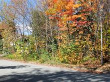 Terrain à vendre à Jacques-Cartier (Sherbrooke), Estrie, Rue  Antoine-Naaman, 9497072 - Centris.ca