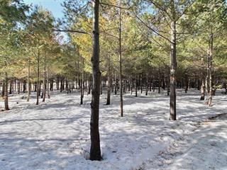 Lot for sale in Rouyn-Noranda, Abitibi-Témiscamingue, 7204A, Rue  Saguenay, 19785764 - Centris.ca
